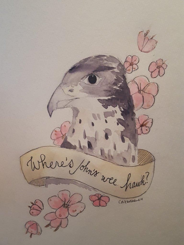 Cat Bakewell-hawk